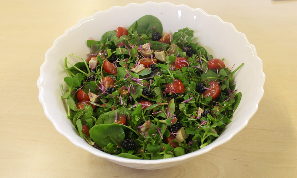 Forgaing_wild_salad